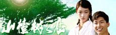 最卖座的文艺片《山楂树之恋》